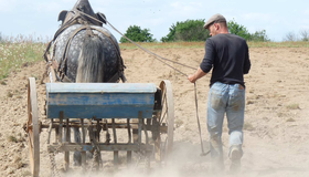 Débardage, travail agricole et utilitaire